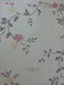 Decal dán tường hàn quốc –  Mã: 13815
