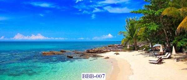 Tranh dán tường Biển Mã BBB-007