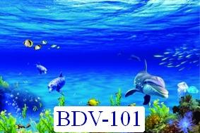 BDV-101