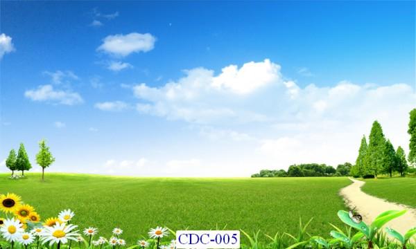 Tranh dán tường Cánh đồng Mã CDC – 005