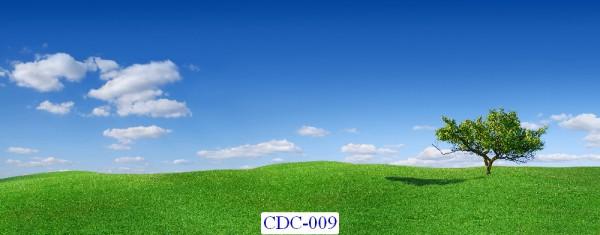 Tranh dán tường Cánh đồng Mã CDC – 009