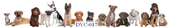 Tranh dán tường Động vật Mã DVC – 017