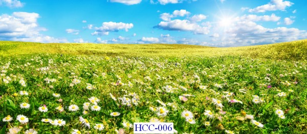 Tranh dán tường Hoa Mã HCC- 006