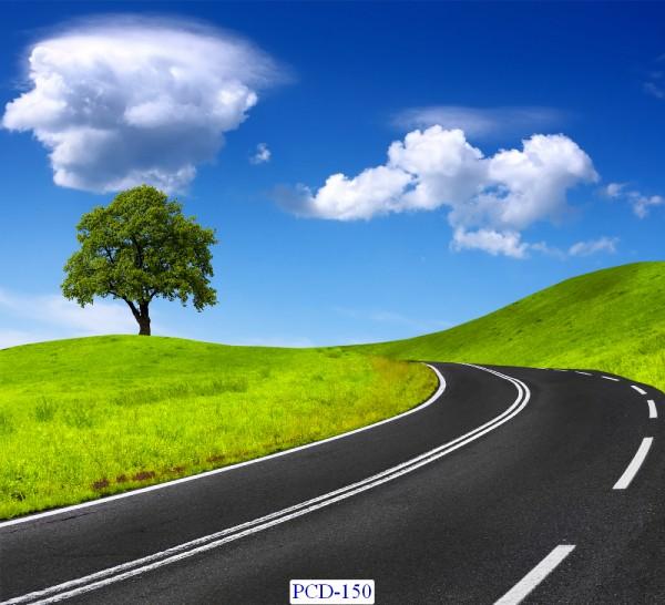 Tranh dán tường Phong cảnh đẹp Mã PCD – 150