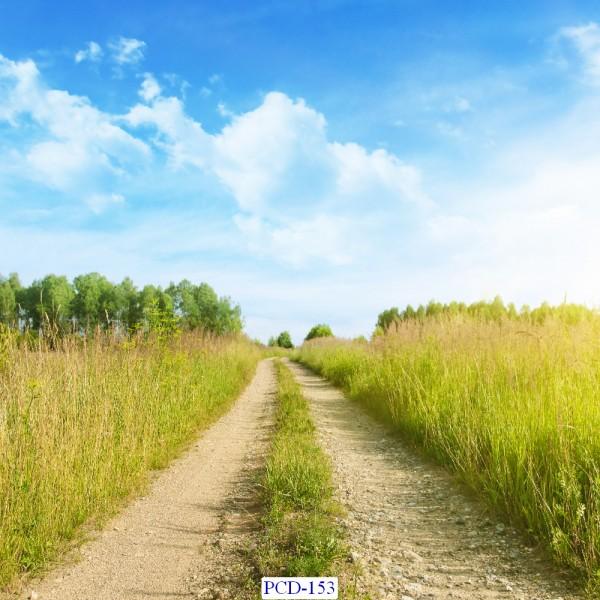 Tranh dán tường Phong cảnh đẹp Mã PCD – 153