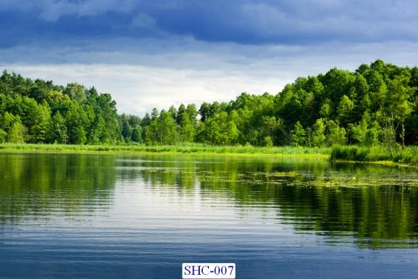 Tranh dán tường Hồ sông suối mã SHC – 007